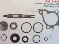 HONDA FES,HONDA PANTHEON 250cc FORESIGHT-250cc